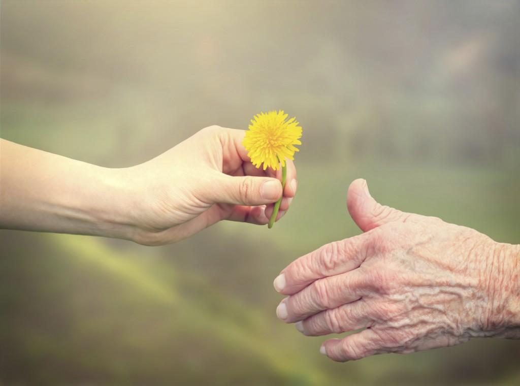 assistenza-domiciliare-ne-hai-bisogno-aiuto-fiore-mani