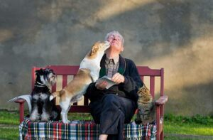 persona-anziana-animale-domestico